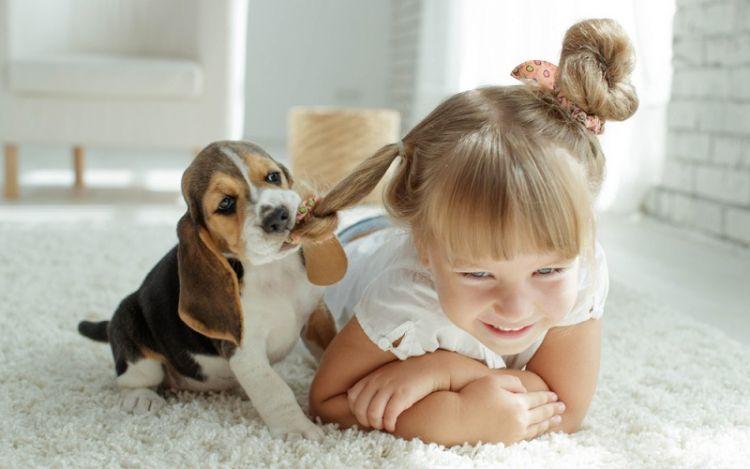 Собака — радость каждого ребенка, 50 милейших фото